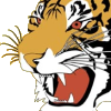 Logo Tigers UHC Chapelle